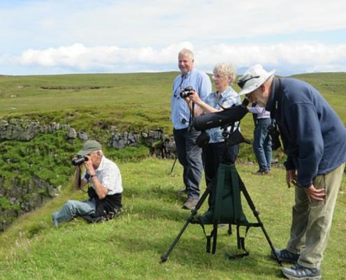 Wildlife watching trip, binoculars and telescope provided